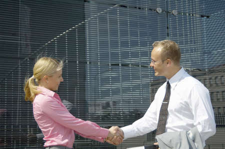 Businessman and businesswoman shaking hands Stock Photo - 3194123