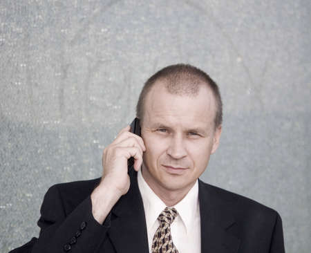 Businessman talking on the mobile phone Stock Photo - 3194127