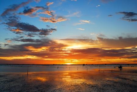 Beach at the sunset