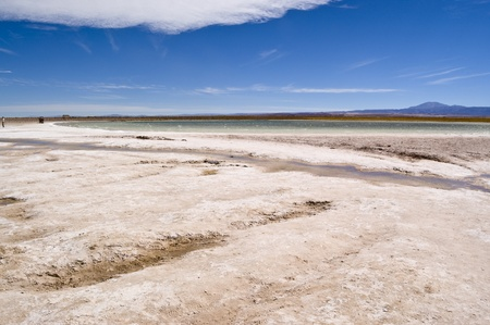 Wiew of hypersaline Cejar Lagoon, Chile
