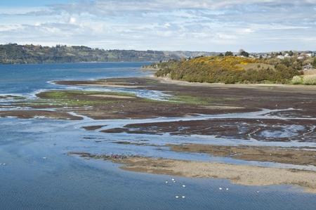estuary: Estuary in Castro. Castro is the capital of Chiloé Province, in the Los Lagos Region, Chile Stock Photo