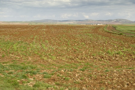 agrarian: Fallow field in an agrarian landscape in Ciudad Real (Spain) Stock Photo