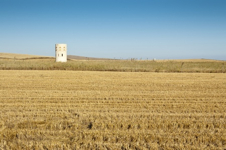 agrarian: Dove cote in an agrarian landscape in Ciudad Real Province, Spain