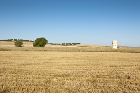 Dove cote in an agrarian landscape in Ciudad Real Province, Spain Stock Photo - 12470456