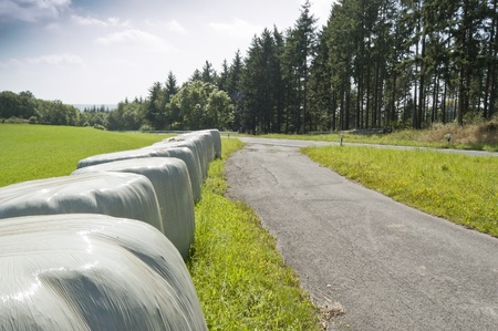 feedstock: Bales of silage. Silage is fermented fodder that can be fed to rumiants.
