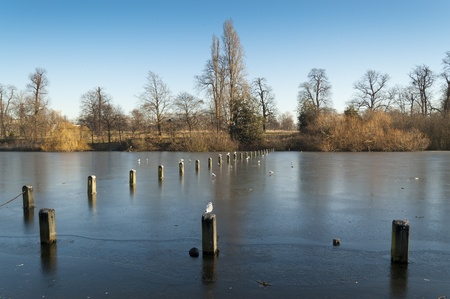 Serpentine Lake, Hyde Park, London. The Serpentine is a 11 ha recreational lake in Hyde Park, London, England, created in 1730 photo