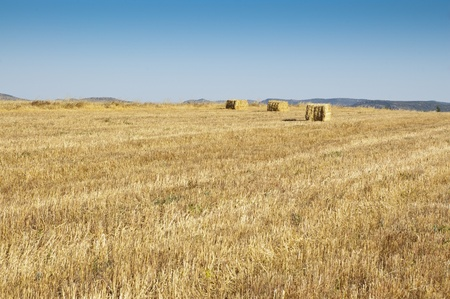 Oats stubble and bale of hay photo