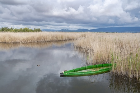 Tablas de Daimiel National Park, Spain  It is a nature reserve in south-central Spain  Stock Photo