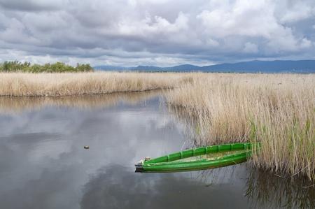 aquifer: Tablas de Daimiel National Park, Spain  It is a nature reserve in south-central Spain  Stock Photo