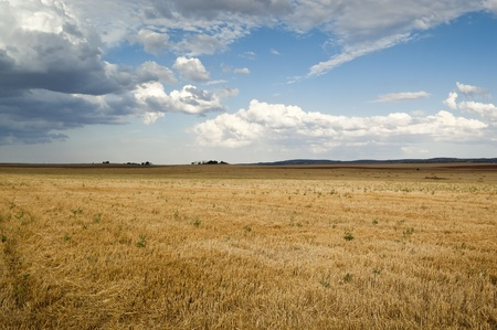 stubble field: Stubble field in an agricultural landscape in Ciudad Real Province, Spain Stock Photo