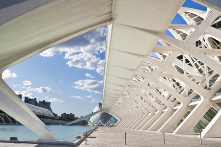 Detail of the Felipe Prince Science Museum at The City of Arts and Sciences on August 26, 2011 in Valencia, Spain  It is an architectural complex designed by famous Santiago Calatrava  Museum resembles the skeleton of a whale