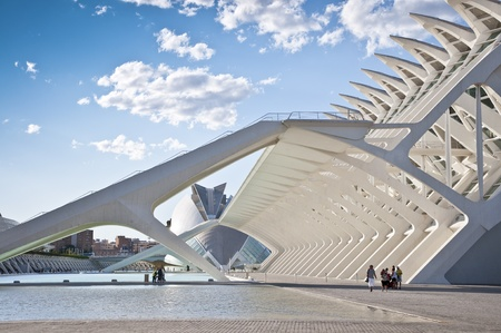 Detail of the Museo de las Ciencias Prncipe Felipe  Felipe Prince Science Museum  at The City of Arts and Sciences on August 26, 2011 in Valencia, Spain  It is an architectural complex designed by famous Santiago Calatrava  Museum resembles the skeleton o