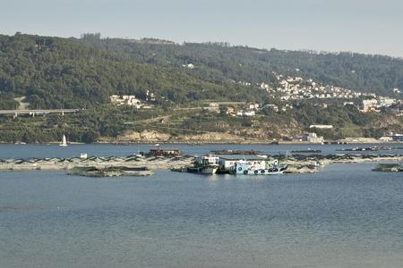 goteros: Ría de Vigo Sobre el mar, algunas bateas de cultivo en balsas mejillones Imagen tomada en la Ría de Vigo, Galicia, España