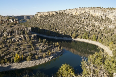 "juniper tree: View of Duraton River Canyon  This place is situated in the ""Hoces del Rio Duraton"" Natural Park, Segovia Province, Spain  The tree vegetation growing on the slopes of canyon consists of Juniper tree  Juniperus thurifera  Stock Photo"