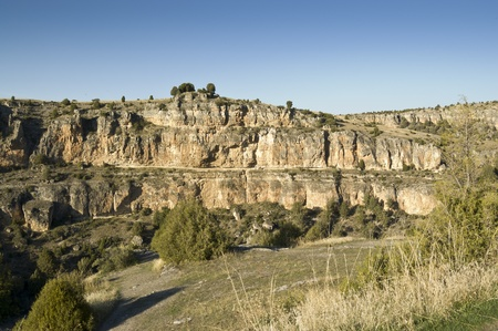 "juniper tree: View of Duraton River Canyon  This place is situated in the ""Hoces del Rio Duraton"" Natural Park, Segovia Province, Spain  The tree vegetation growing on the slopes of canyon consists of Juniper tree  Juniperus thurifera"