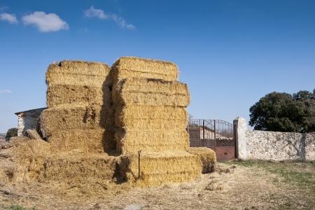 brea: Bales of hay  Photo taken in Brea de Tajo, Madrid Province, Spain
