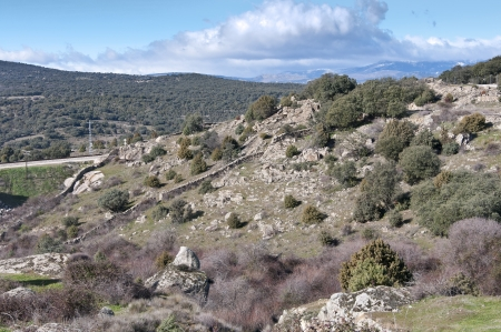 steep holm: Mediterranean vegetation at Guadarrama Mountains, Madrid, Spain  It is a mountain range forming the main eastern section of the Sistema Central, the system of mountain ranges at the centre of the Iberian Peninsula