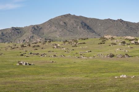 viejo: Commonages pastures in Dehesa de Navalvillar, Colmenar Viejo, Madrid, Spain  At the background, the Cerro de San Pedro, San Pedro Peak