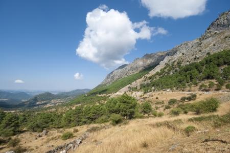 boyar: Views of Grazalema Natural Park from Boyar Mountain Pass, Cadiz, Andalusia, Spain