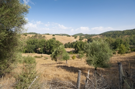 Views of Andalusian countryside from El Bosque town, Cadiz, Spain