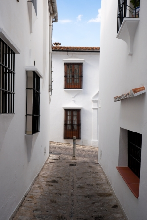 Traditional white houses in Grazalema town, Spain  This village is part of the pueblos blancos -white towns- in southern Spain Andalusia region