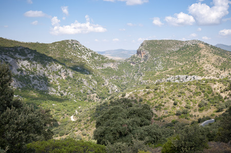 scrub grass: Views of Grazalema Natural Park from Acebuches Mountain Pass, Cadiz, Andalusia, Spain