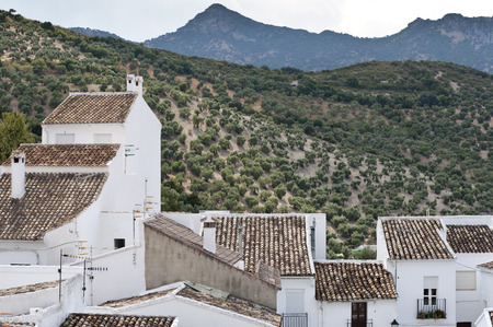 Traditional White houses in Zahara de la Sierra, Spain. This village is part of the pueblos blancos -white towns- in southern Spain Andalusia region  photo