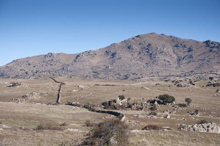 viejo: Commonage pastures of Dehesa de Navalvillar, Colmenar Viejo, Madrid, Spain. At  the Cerro de San Pedro, San Pedro Peak