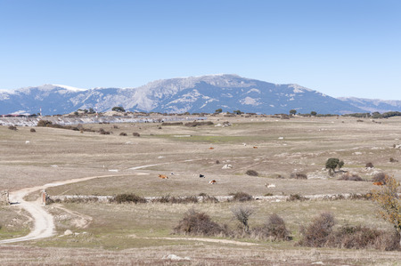 General views of Dehesa de Navalvillar, Colmenar Viejo, Madrid, Spain  At the background, Guadarrama Mountains