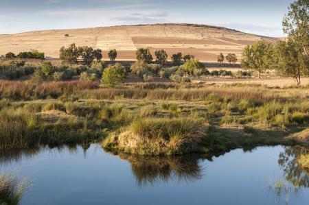 cropland: The Bullaque River at its pass through Porzuna, La Mancha, Ciudad Real, Spain Stock Photo