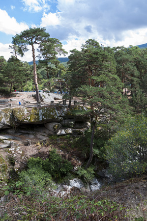 recreational area: Scots pine forest next to the river Eresma on its course through Boca del Asno, Segovia Province, Spain, a recreational area in Guadarrama Mountains