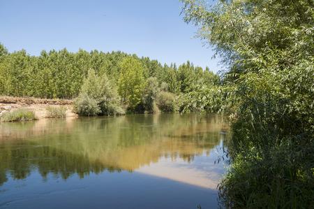 rivulet: Views of the River Esla on its way through Villanueva de las Manzanas Municipality, in Leon Province, Spain