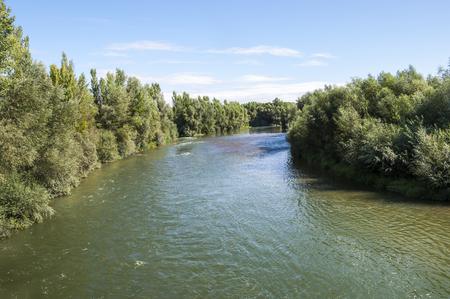 fluvial: Views of the River Esla on its way through Villanueva de las Manzanas Municipality, in Leon Province, Spain