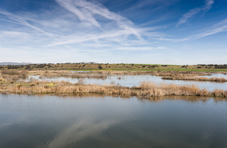 Wetlands associated with de River Guadiana, next to the Vicario Reservoir, in Ciudad Real Province, Spain Stock Photo