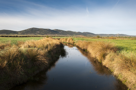 arroyo: Views of Arroyo de la Becea. It is an intermittent stream, tributary of the River Guadiana, in Ciudad Real Province, La Mancha, Spain