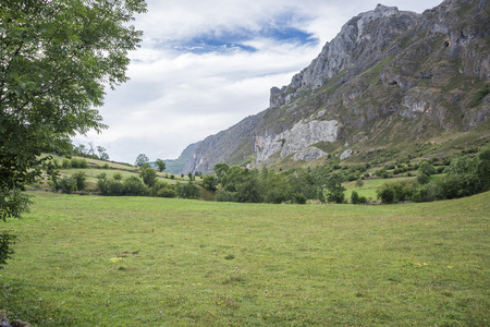 fifteen: Hay meadows in Valle del Lago, one of fifteen parishes in Somiedo, a municipality located in the central area of the Cantabrian Mountains, Principality of Asturias, Spain