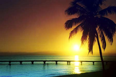 florida landscape: Panaromic sunset.