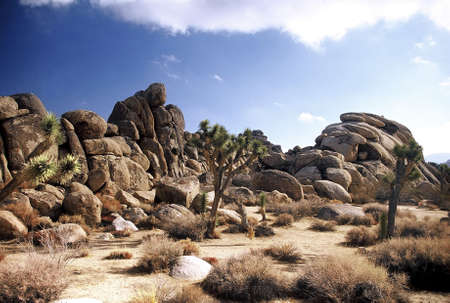 rock formation: Desert. LANG_EVOIMAGES