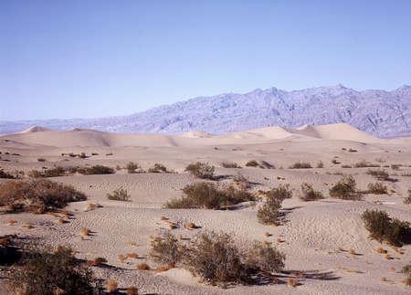 Desert. Stock Photo - 3191144