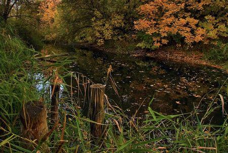 Autumn on a lake Stock Photo