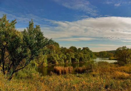 Autumn on an old pond Stock Photo - 7808843