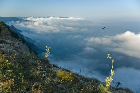 Flying above the clouds Stock Photo - 7899053