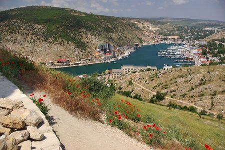 Poppies in the Bay of Balaclava Stock Photo