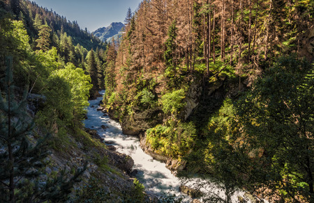 In the gorge of the river Gonachkhir Stock Photo