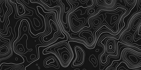 Topographic map on dark background. Vector grid map. Ilustração