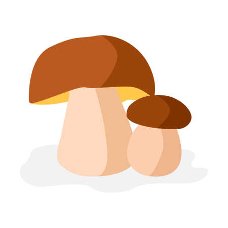 Fresh mushrooms on white background. Isolated porcini icon. Vector champignons sign. Edible mushrooms for cook food. 向量圖像