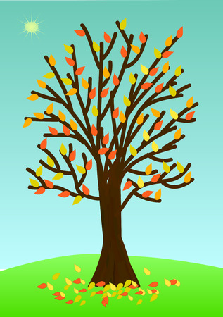 Autumn tree with poor foliage