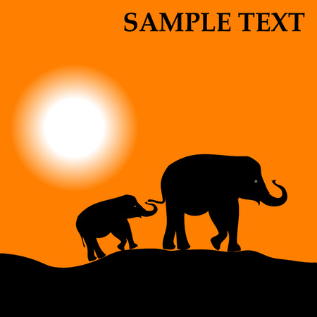 Africa landscape with sundown and elephant vector background Vector