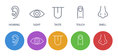 Icon set of five human senses: hearing (ear), vision (eye), smell (nose), taste (mouth with tongue), touch (hand, finger). Simple line icons with color circles. Flat design vector illustration.