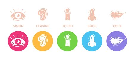 Five human senses icons set. Vision, hearing, touch, smell and taste. Eye, ear, hand, finger, nose and mouth. Cute simple modern design. Symbols and logos. Flat style vector illustration.